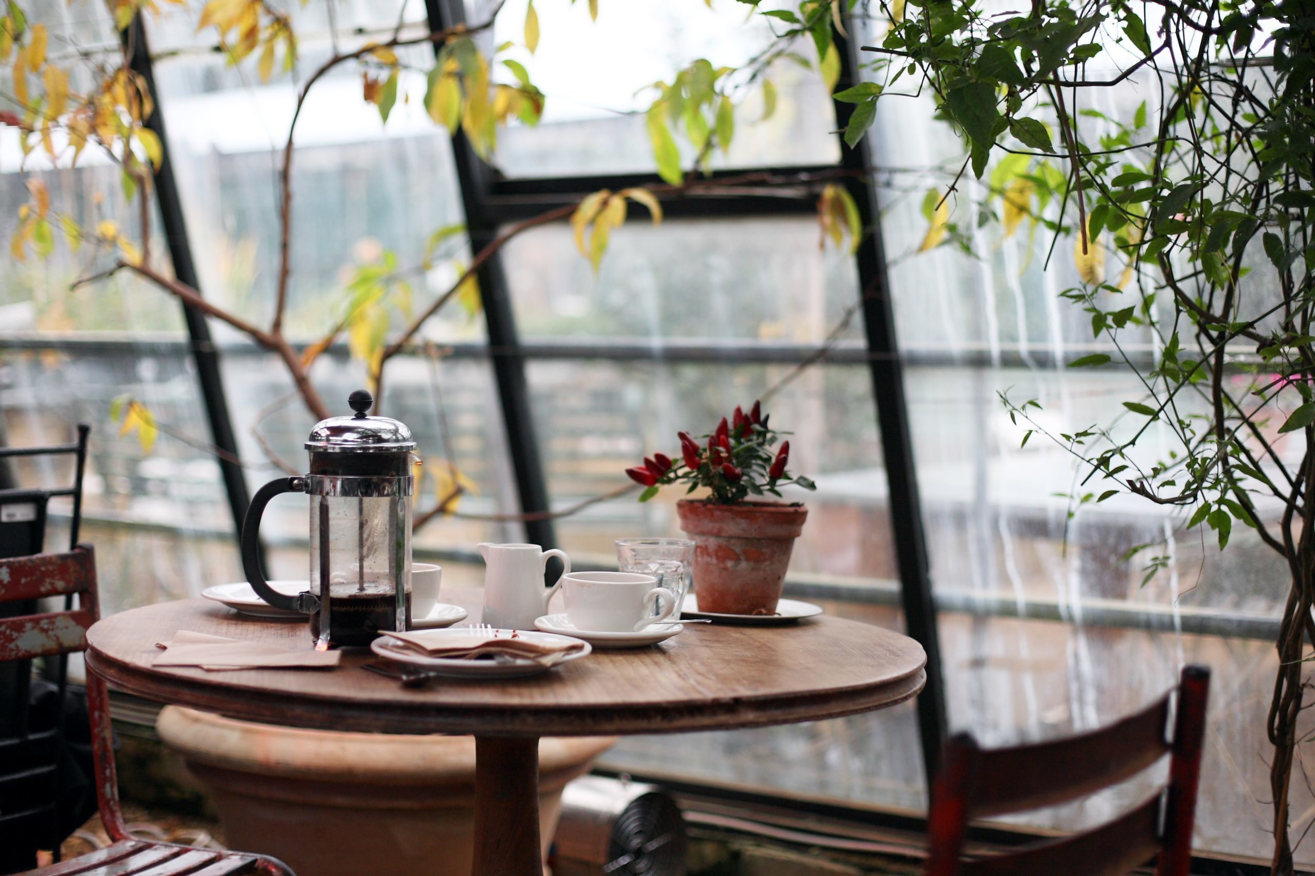 questions about French press Coffee by beginners