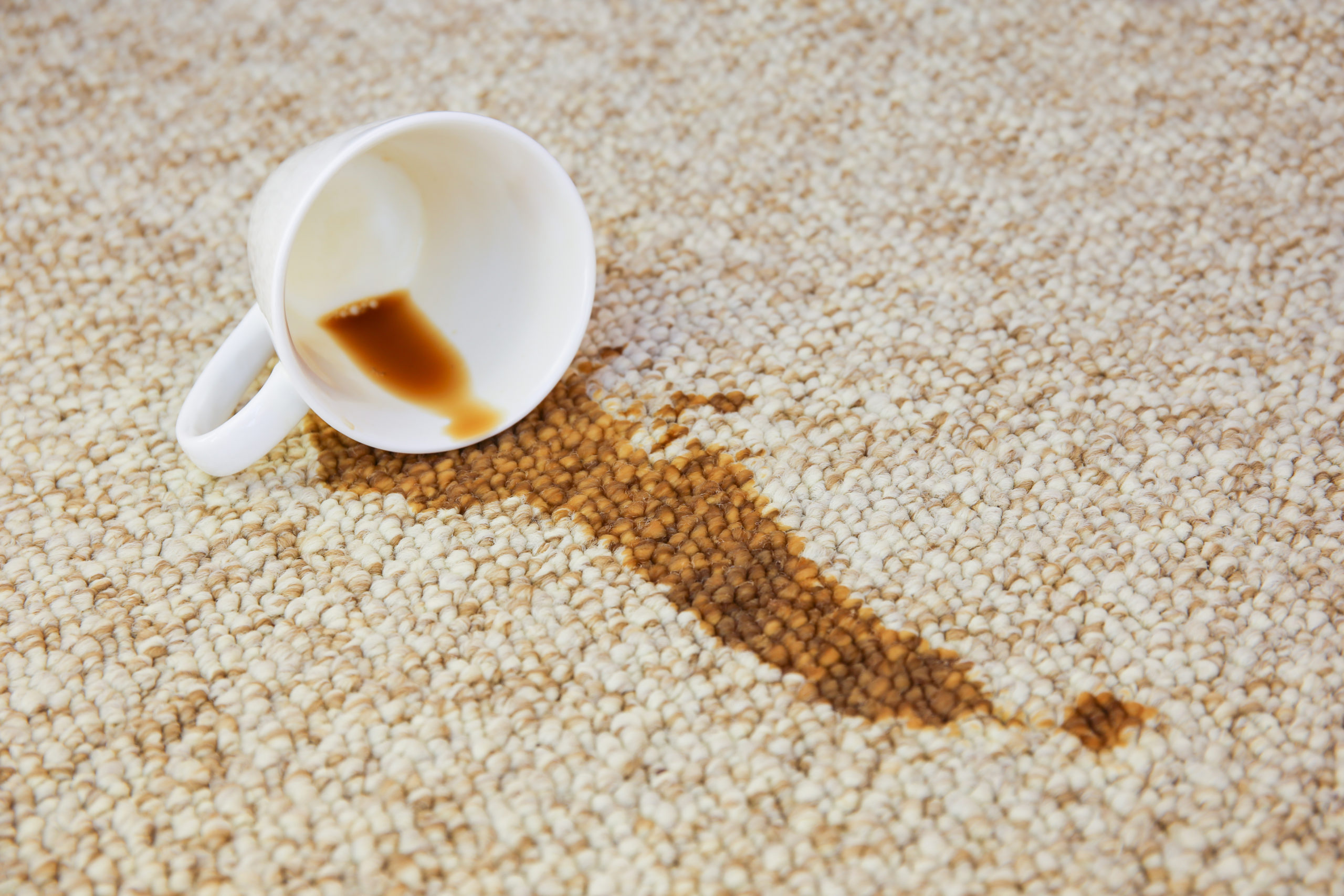 How to Get Coffee Out of Carpet Feature
